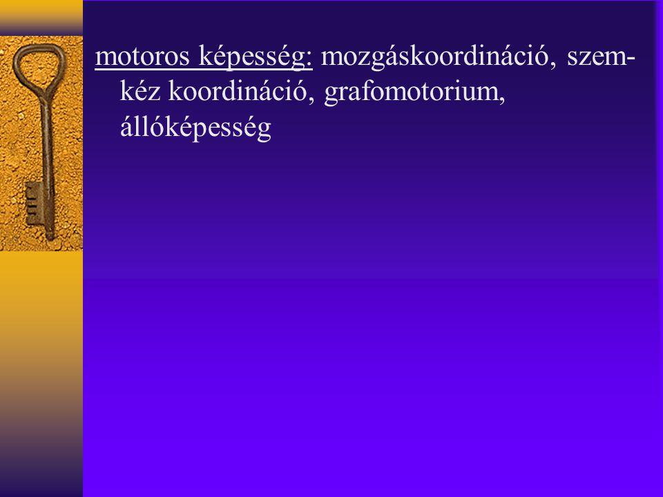 motoros képesség: mozgáskoordináció, szem- kéz koordináció, grafomotorium, állóképesség