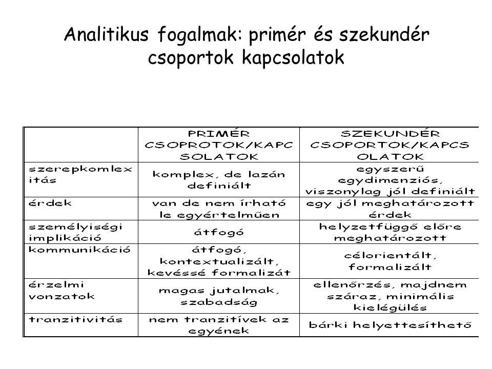 Analitikus fogalmak: primér és szekundér csoportok kapcsolatok