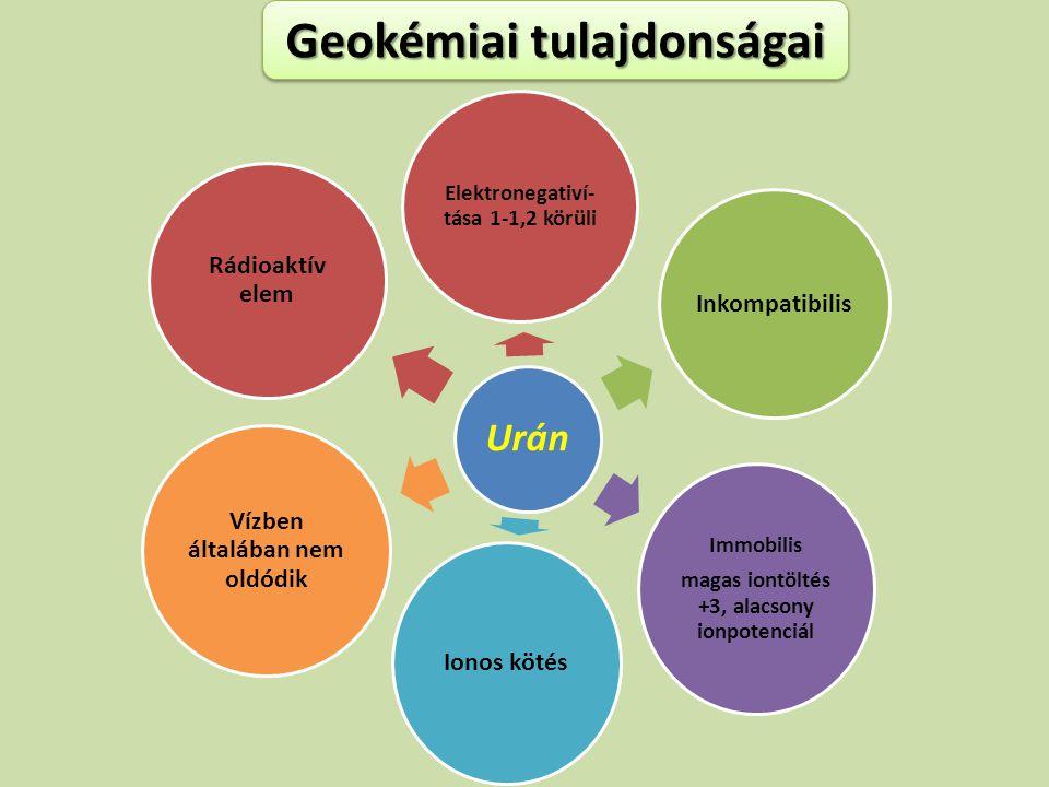 Urán Elektronegativí- tása 1-1,2 körüli Inkompatibilis Immobilis magas iontöltés +3, alacsony ionpotenciál Ionos kötés Vízben általában nem oldódik Rá