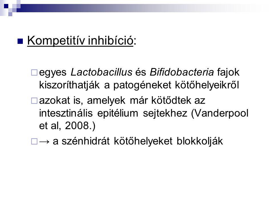 Kompetitív inhibíció:  egyes Lactobacillus és Bifidobacteria fajok kiszoríthatják a patogéneket kötőhelyeikről  azokat is, amelyek már kötődtek az i