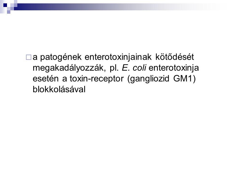  a patogének enterotoxinjainak kötődését megakadályozzák, pl. E. coli enterotoxinja esetén a toxin-receptor (gangliozid GM1) blokkolásával