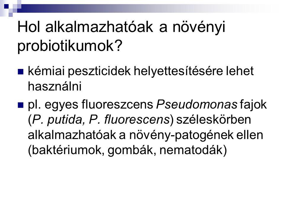 Hol alkalmazhatóak a növényi probiotikumok? kémiai peszticidek helyettesítésére lehet használni pl. egyes fluoreszcens Pseudomonas fajok (P. putida, P