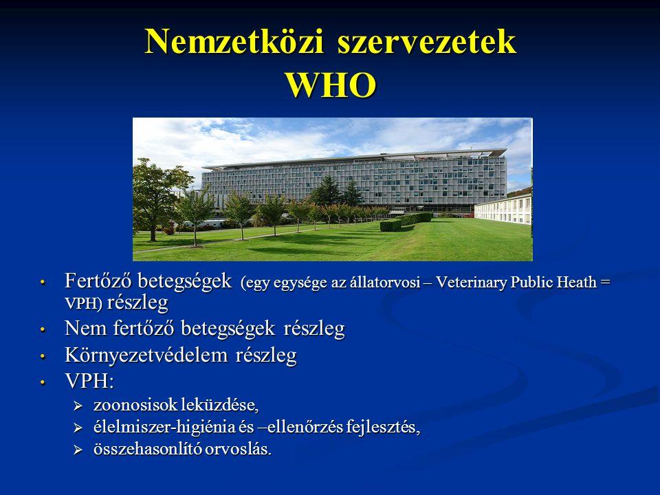 Nemzetközi szervezetek WHO Fertőző betegségek (egy egysége az állatorvosi – Veterinary Public Heath = VPH) részleg Nem fertőző betegségek részleg Körn