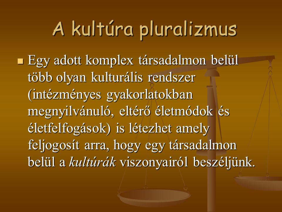 A kultúra pluralizmus A kultúra pluralizmus Egy adott komplex társadalmon belül több olyan kulturális rendszer (intézményes gyakorlatokban megnyilvánu