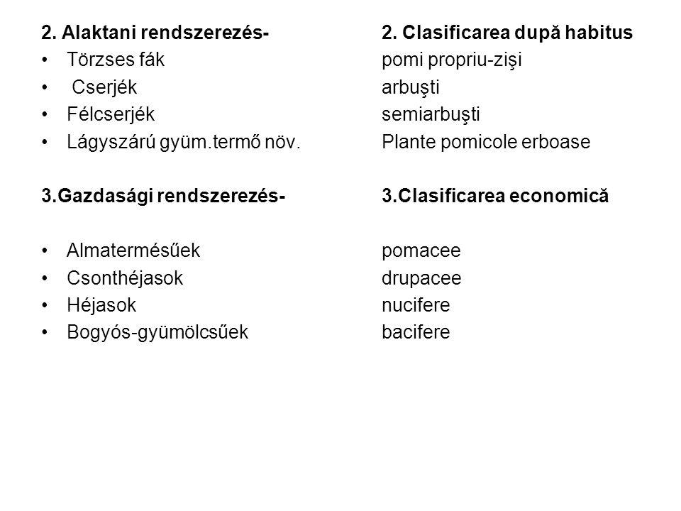 Gyümölcstermő növények Morfologia plantelor pomicole morfológiája gyökérrendszersistemul radicular főgyökérrădăcină principală oldalgyökerekrădăcini laterale karógyökérrădăcină pivotantă bojtos gyökérrădăcină firoasă járulékos gyökerekrădăci adventive felszívó gyökérrădăcină absorbantă gyökérszőrökperi absorbanţi szállító gyökérrădăcină de schelet gyökérrendszer növekedésecreşterea sistemului radicular törzstrunchi magas törzstrunchi înalt közepes törzstrunchi mijlociu alacsony törzstrunchi scund