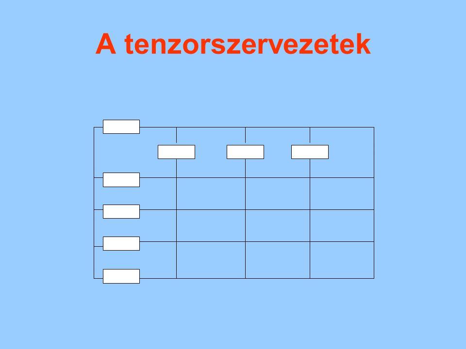 A MÁTRIX SZERVEZETI FORMA A mátrixforma kialakulását befolyásoló tényezők: –a környezet erőteljes változásai; –a feladat komplexitása, újdonsága, rizikótartalma; –az egyidejű tárgyi (termékek, termékcsoportok vagy projektek, esetleg regionális) és funkcionális elvű munkamegosztás kényszere; –a konfliktustűrő, magas kooperációs és kommunikációs jellegű szervezeti magatartások kényszere.
