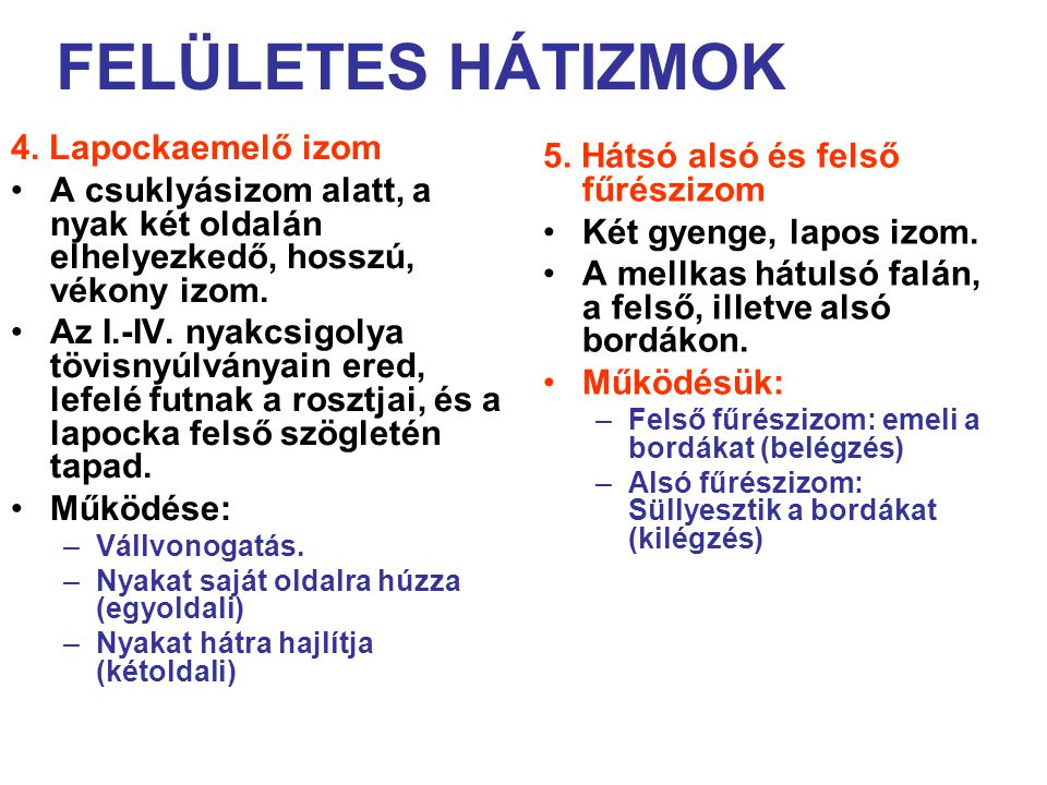 FELÜLETES HÁTIZMOK 4.