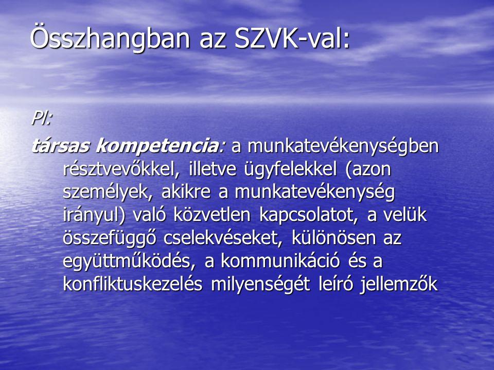 Összhangban az SZVK-val: Pl: társas kompetencia: a munkatevékenységben résztvevőkkel, illetve ügyfelekkel (azon személyek, akikre a munkatevékenység i