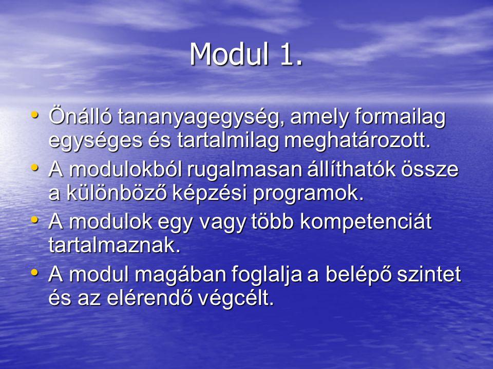 Modul 1. Önálló tananyagegység, amely formailag egységes és tartalmilag meghatározott. Önálló tananyagegység, amely formailag egységes és tartalmilag