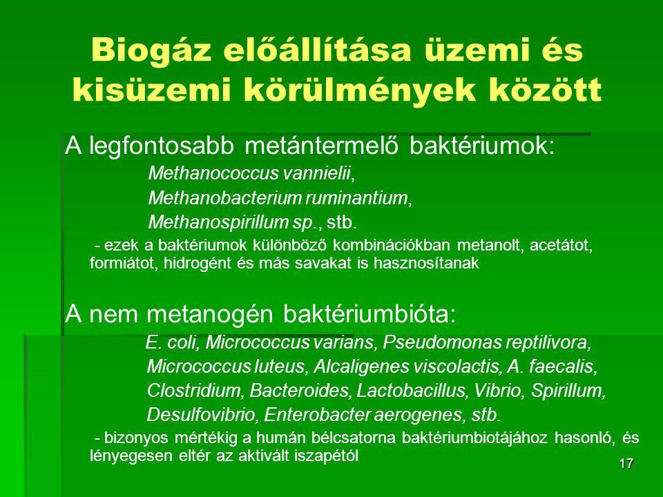 17 Biogáz előállítása üzemi és kisüzemi körülmények között A legfontosabb metántermelő baktériumok: Methanococcus vannielii, Methanobacterium ruminant