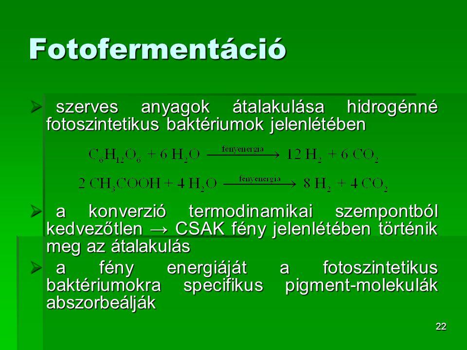 22 Fotofermentáció  szerves anyagok átalakulása hidrogénné fotoszintetikus baktériumok jelenlétében  a konverzió termodinamikai szempontból kedvezőt