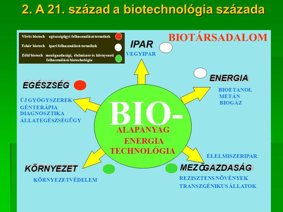 3 BIO- VEGYIPAR EGÉSZSÉG ENERGIA MEZ Õ ÕGAZDASÁG KÖRNYEZET GÉNTERÁPIA BIOTÁRSADALOM BIO- ALAPANYAG ENERGIA TECHNOLÓGIA IPAR EGÉSZSÉG ENERGIA GAZDASÁG