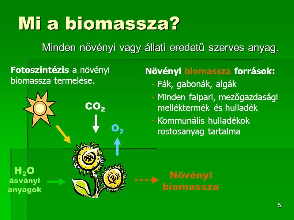 5 Mi a biomassza? Minden növényi vagy állati eredetű szerves anyag. Növényi biomassza források: -Fák, gabonák, algák -Minden faipari, mezőgazdasági me