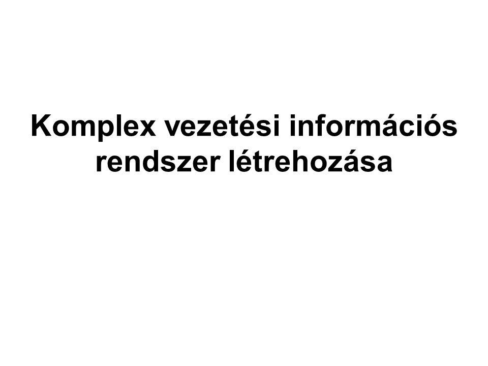 Komplex vezetési információs rendszer létrehozása