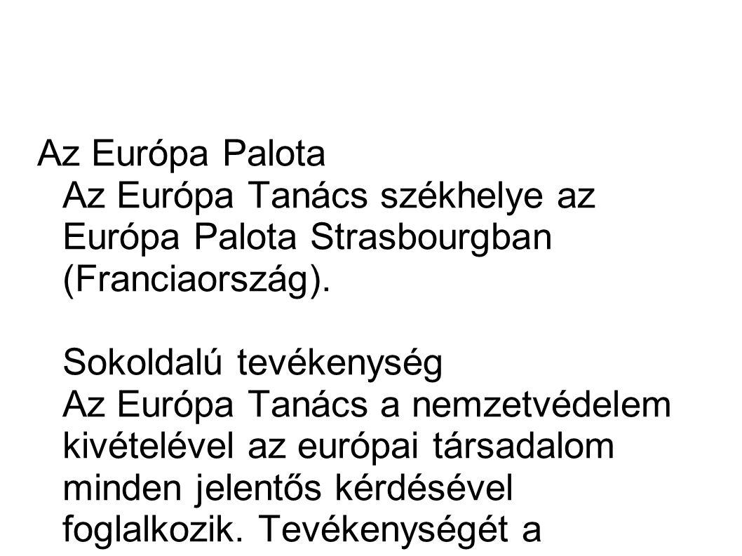 Szerkezete Az Európa Tanács döntéshozó testülete a Miniszteri Bizottság, amely a tagállamok külügyminisztereiből (vagy a tagállamok állandó képviselőiből) áll.