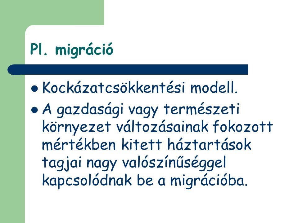 Pl. migráció Kockázatcsökkentési modell. A gazdasági vagy természeti környezet változásainak fokozott mértékben kitett háztartások tagjai nagy valószí
