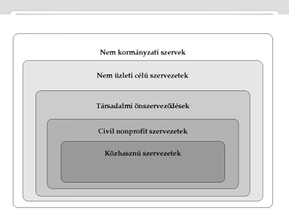 NP szektor elemeinek tipizálása Szervezetek elsődleges tevékenységi területe alapján Domináns tevékenységük és az elsődlegesen betöltött szerepük szerint Sebestény István (2001)