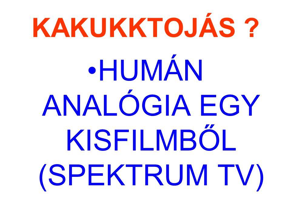 KAKUKKTOJÁS HUMÁN ANALÓGIA EGY KISFILMBŐL (SPEKTRUM TV)