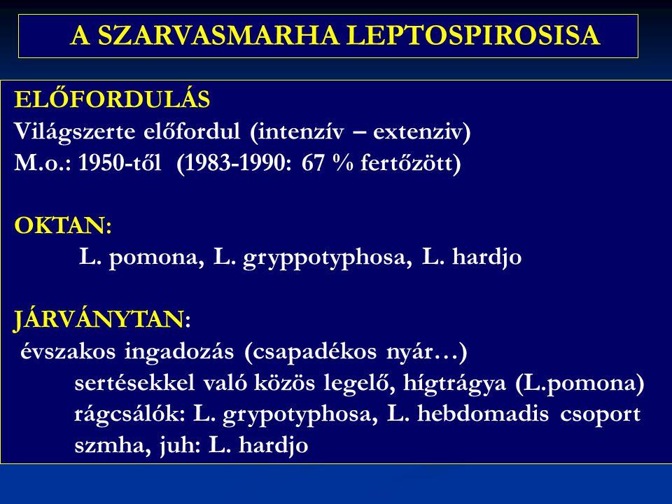 ELŐFORDULÁS Világszerte előfordul (intenzív – extenziv) M.o.: 1950-től (1983-1990: 67 % fertőzött) OKTAN: L. pomona, L. gryppotyphosa, L. hardjo JÁRVÁ