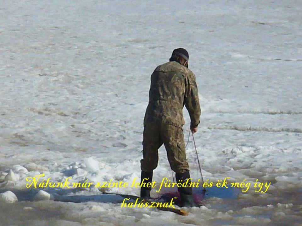 Nálunk már szinte lehet fürödni és ök még igy halásznak