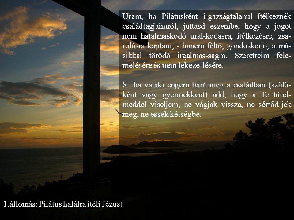 1.állomás: Pilátus halálra ítéli Jézust Uram, ha Pilátusként i-gazságtalanul ítélkeznék családtagjaimról, juttasd eszembe, hogy a jogot nem hatalmaskodó ural-kodásra, ítélkezésre, zsa- rolásra kaptam, - hanem féltő, gondoskodó, a má- sikkal törődő irgalmas-ságra.