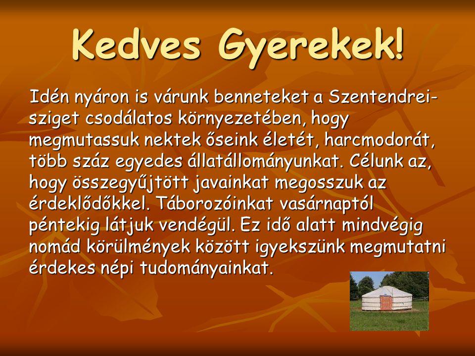 Kedves Gyerekek! Idén nyáron is várunk benneteket a Szentendrei- sziget csodálatos környezetében, hogy megmutassuk nektek őseink életét, harcmodorát,