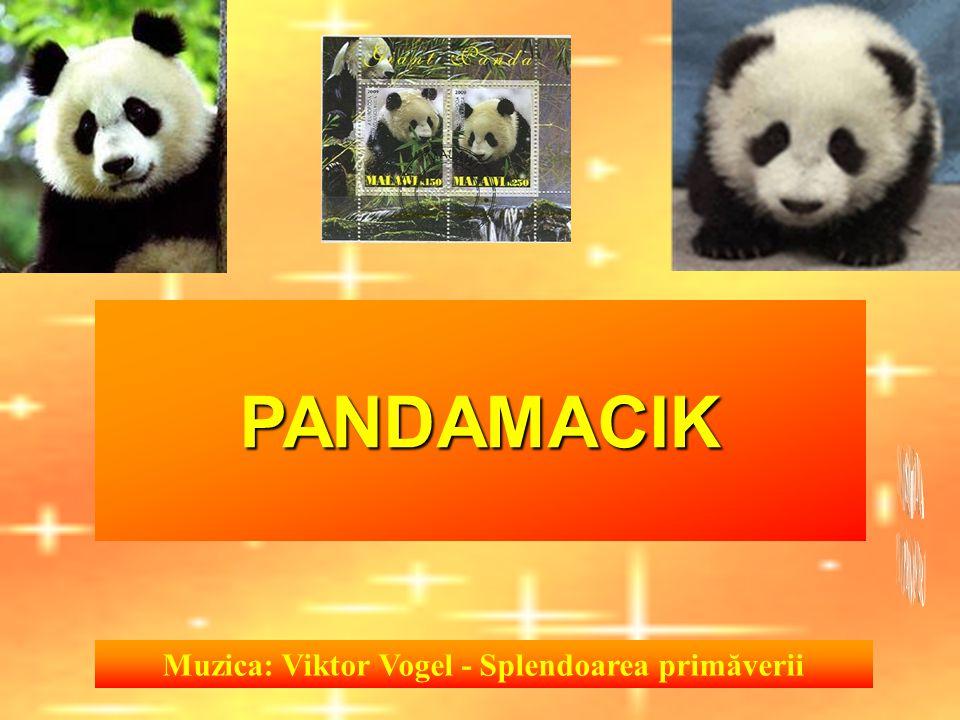 Muzica: Viktor Vogel - Splendoarea primăverii PANDAMACIK
