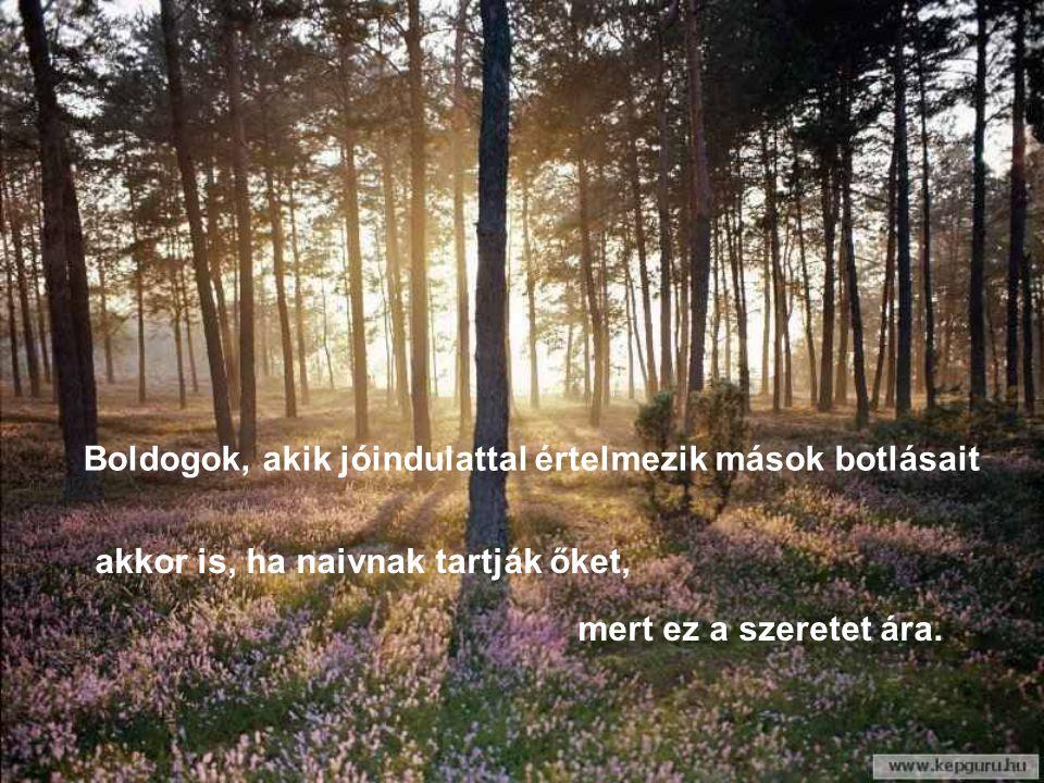 Boldogok, akik megbecsülik a mosolyt és elfelejtik a fintort mert útjuk napfényes lesz.