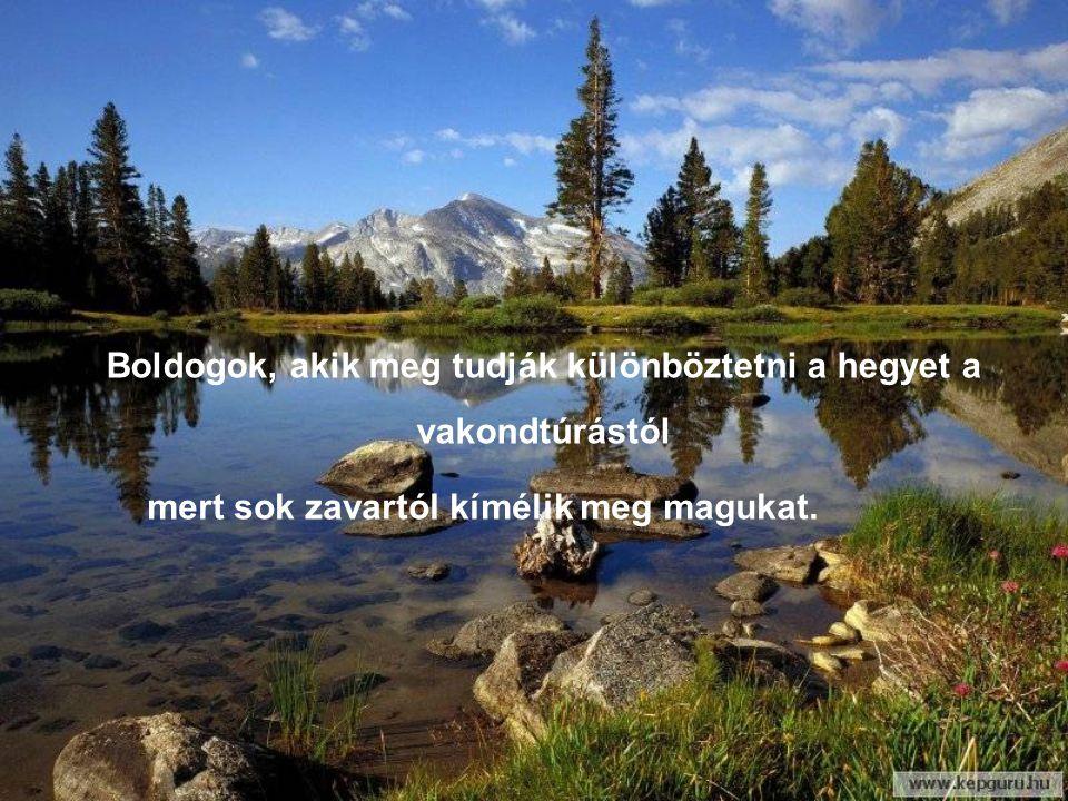 Boldogok, akik meg tudják különböztetni a hegyet a vakondtúrástól mert sok zavartól kímélik meg magukat.