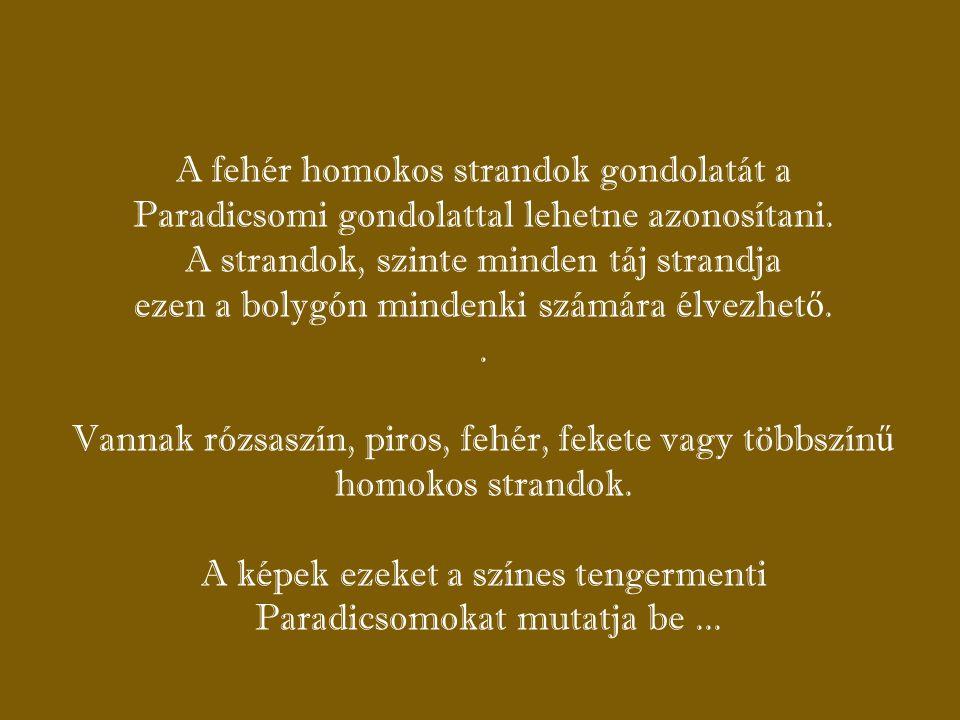 STRANDOK KATTINTS