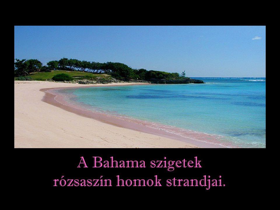 A fehér homokos strandok gondolatát a Paradicsomi gondolattal lehetne azonosítani.
