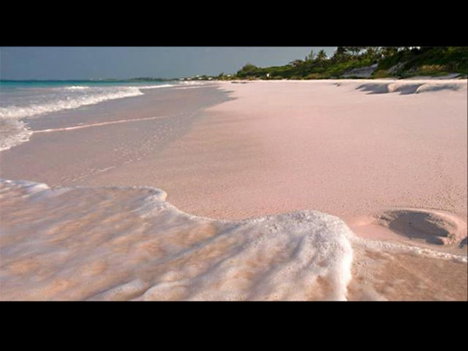 A Guinness Rekordok Könyve, szerint a világ legfehérebb homokos strandja, a Hyams Beach, Új-Dél-Gale-bantalálható, két órányira Sydney-t ő l.