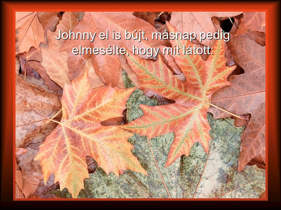 Johnny el is bújt, másnap pedig elmesélte, hogy mit látott: