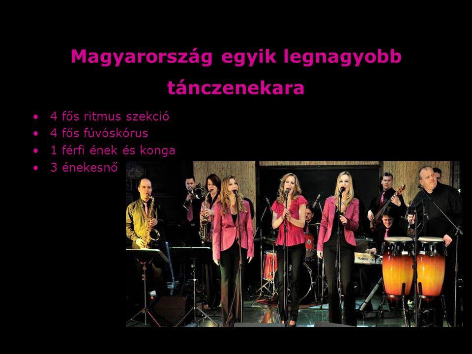 Magyarország egyik legnagyobb tánczenekara 4 fős ritmus szekció 4 fős fúvóskórus 1 férfi ének és konga 3 énekesnő