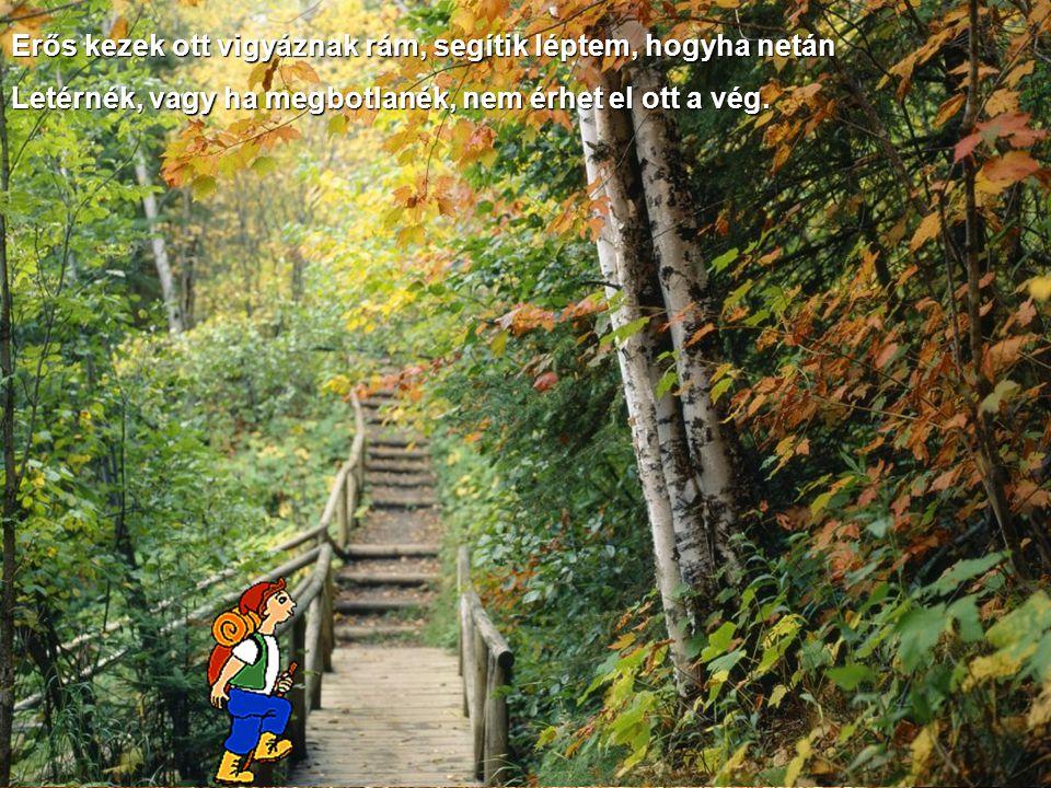A keskeny úton vígan megyek, jöhetnek közben völgyek, hegyek, Jöhetnek néha borús napok, a keskeny úton úgyis megmaradok.