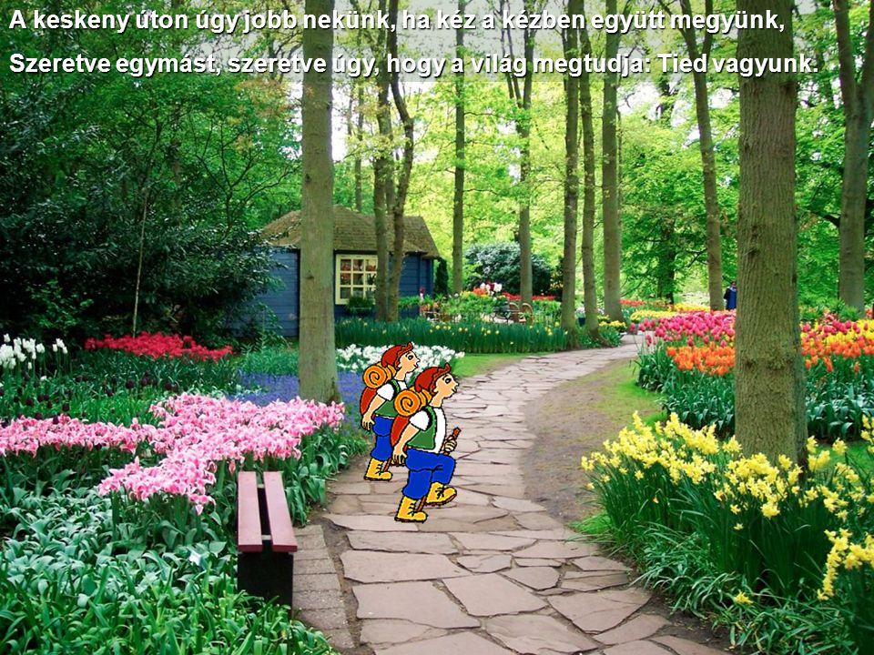 Ennek örömét élni, de jó: Most még csak hit, de egyszer való; Egyszer majd eljön az az idő, amikor visszajön Ő!