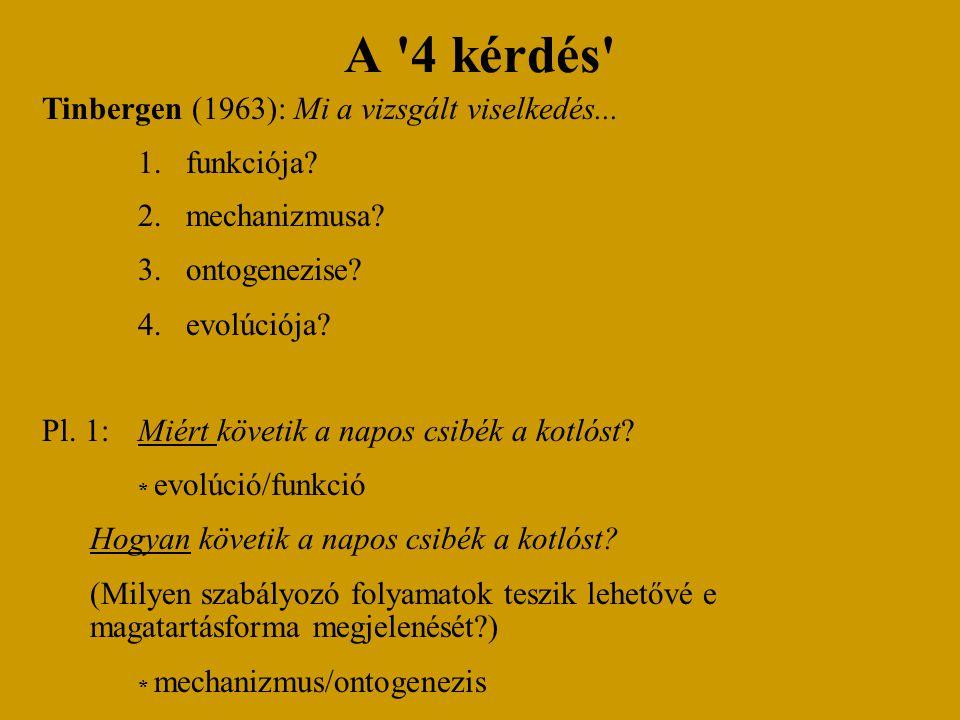 A 4 kérdés Tinbergen (1963): Mi a vizsgált viselkedés...