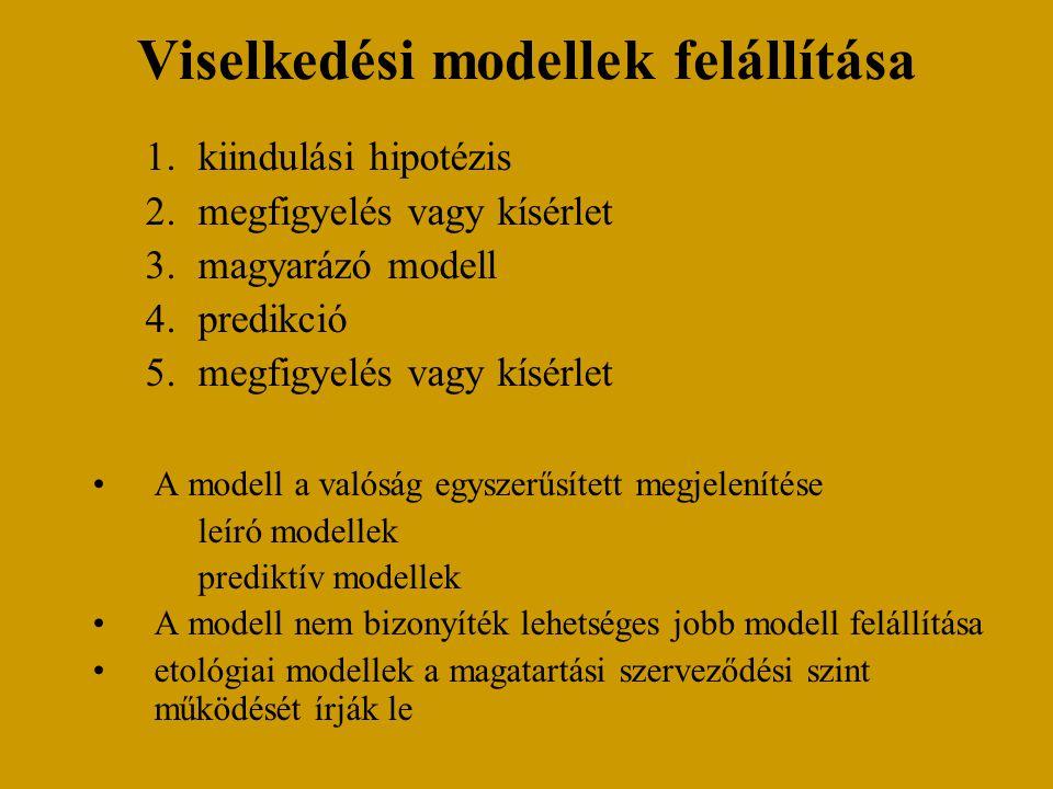 Viselkedési modellek felállítása 1.kiindulási hipotézis 2.megfigyelés vagy kísérlet 3.magyarázó modell 4.predikció 5.megfigyelés vagy kísérlet A modell a valóság egyszerűsített megjelenítése leíró modellek prediktív modellek A modell nem bizonyíték lehetséges jobb modell felállítása etológiai modellek a magatartási szerveződési szint működését írják le