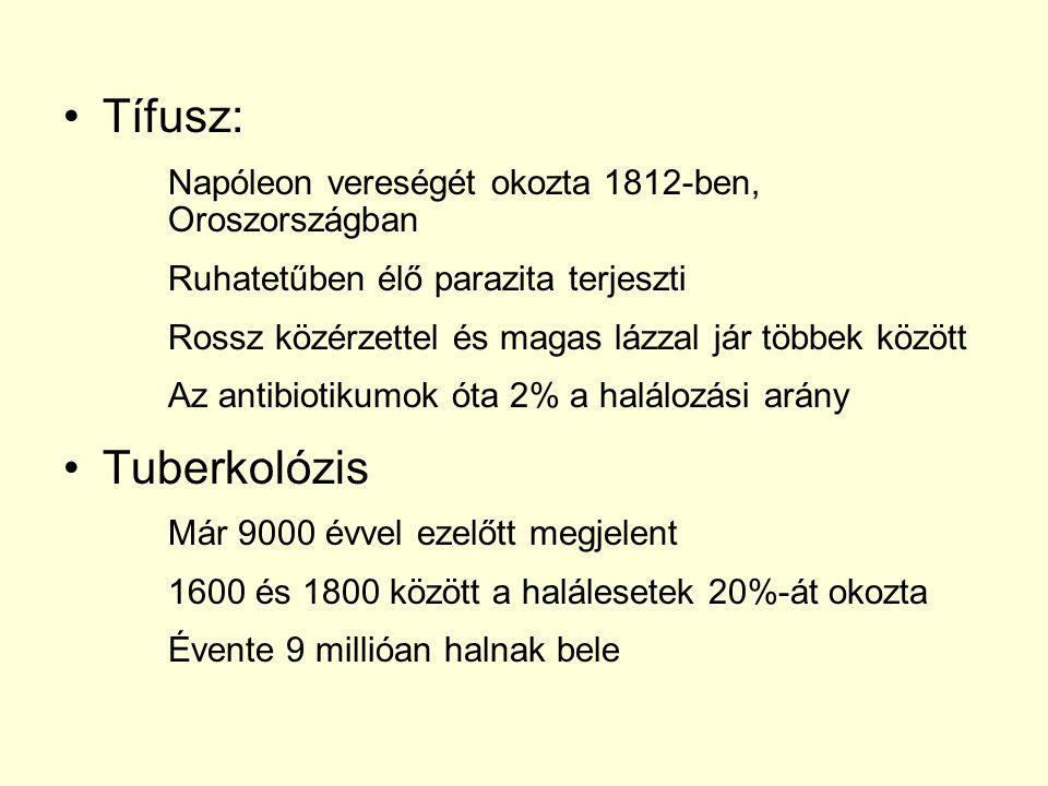 Malária: Anofeles szúnyog terjeszti Mai napig harcol ellene az orvostudomány Tünetei közé tartozik: magas láz, hidegrázás Gyermekparalízis: 1960-as években fedezték fel a védőoltást Azóta gyakorlatilag megszűnt a civilizált országokban Megelőzni lehet, gyógyítani nem
