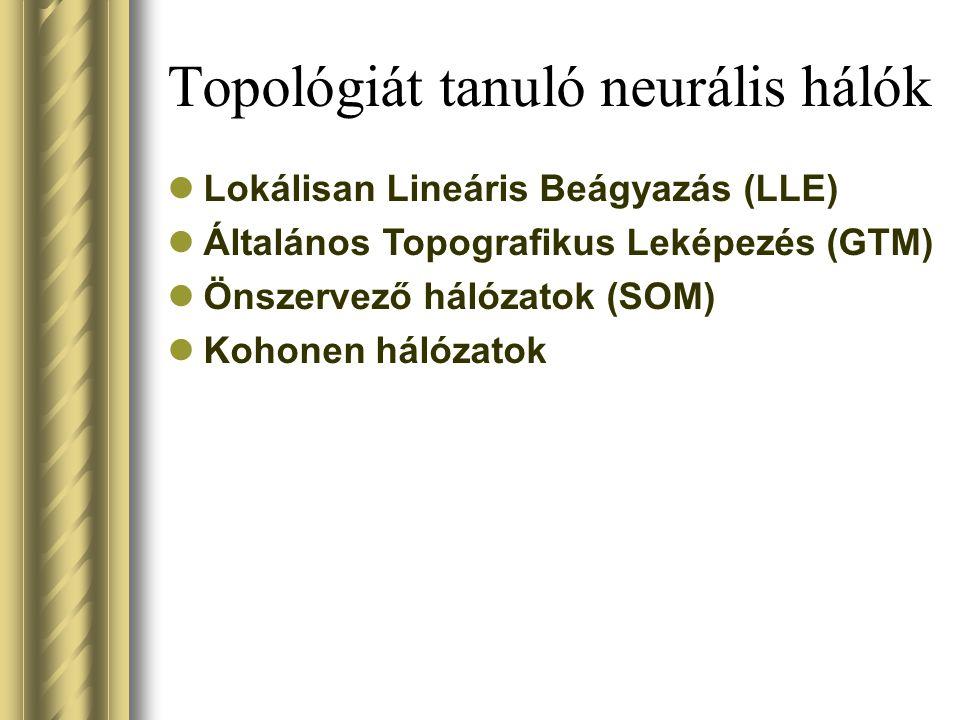 Topológiát tanuló neurális hálók Lokálisan Lineáris Beágyazás (LLE) Általános Topografikus Leképezés (GTM) Önszervező hálózatok (SOM) Kohonen hálózatok
