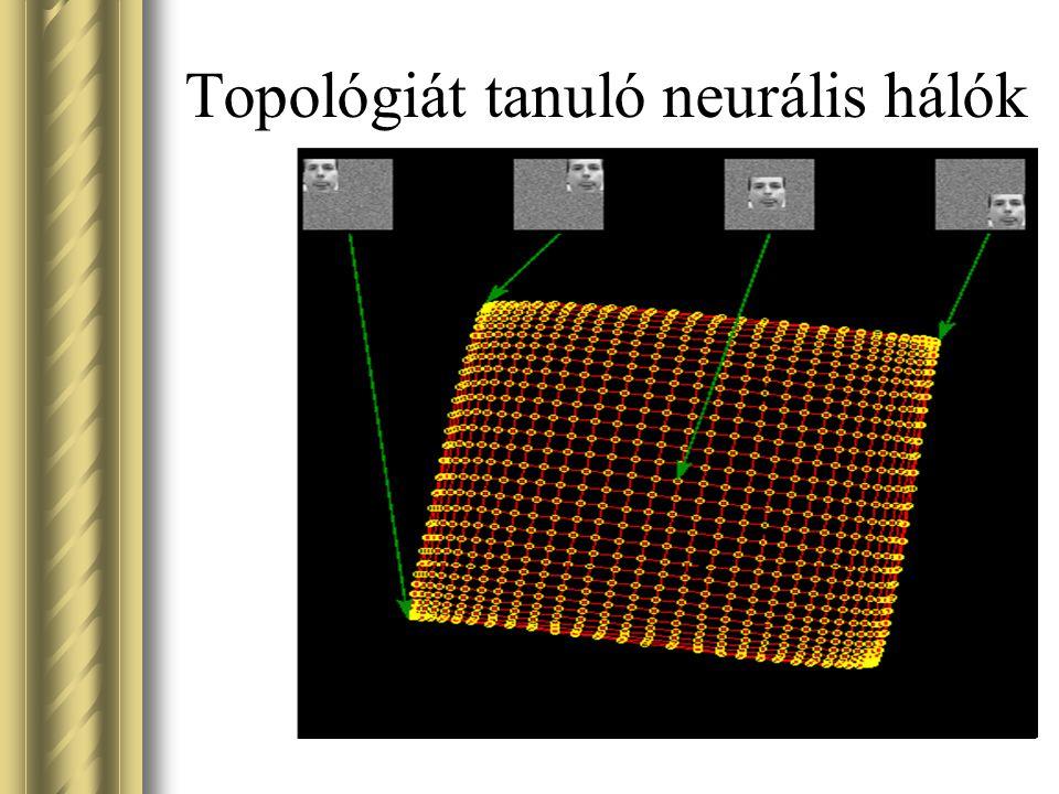Topológiát tanuló neurális hálók
