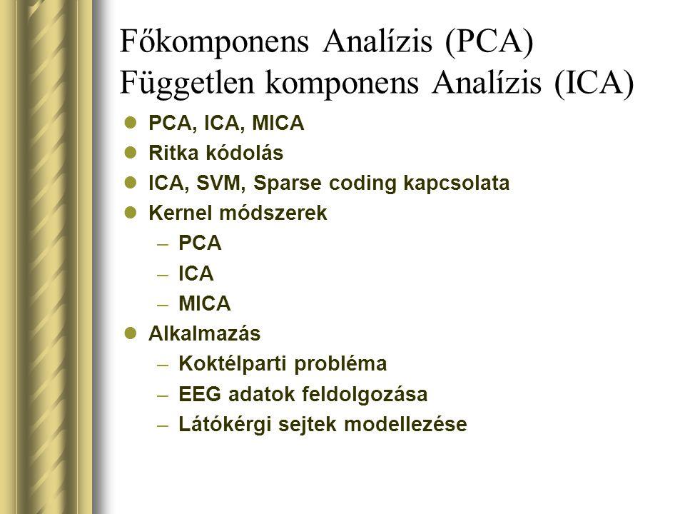 Főkomponens Analízis (PCA) Független komponens Analízis (ICA) PCA, ICA, MICA Ritka kódolás ICA, SVM, Sparse coding kapcsolata Kernel módszerek –PCA –ICA –MICA Alkalmazás –Koktélparti probléma –EEG adatok feldolgozása –Látókérgi sejtek modellezése