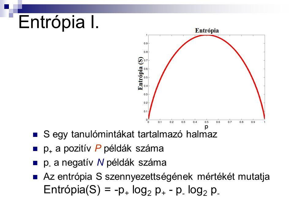 Entrópia I.