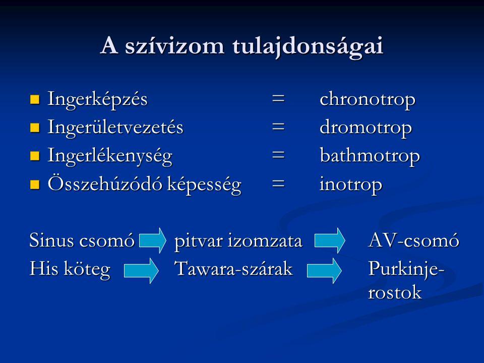 A szívizom tulajdonságai Ingerképzés=chronotrop Ingerképzés=chronotrop Ingerületvezetés=dromotrop Ingerületvezetés=dromotrop Ingerlékenység=bathmotrop Ingerlékenység=bathmotrop Összehúzódó képesség=inotrop Összehúzódó képesség=inotrop Sinus csomópitvar izomzataAV-csomó His kötegTawara-szárakPurkinje- rostok