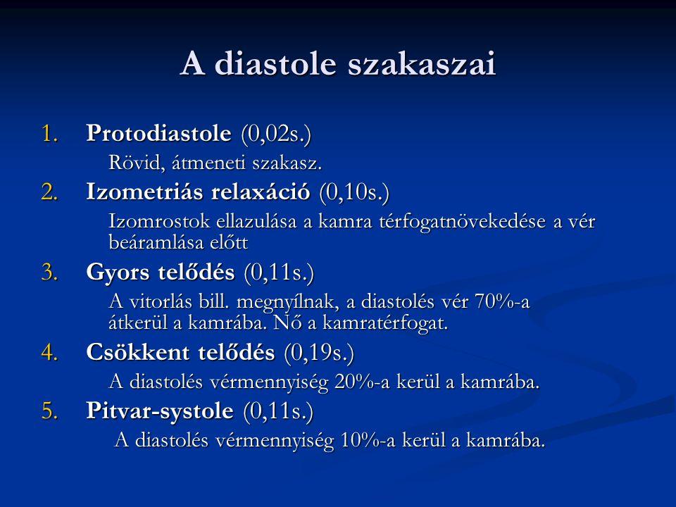 A diastole szakaszai 1.Protodiastole (0,02s.) Rövid, átmeneti szakasz.