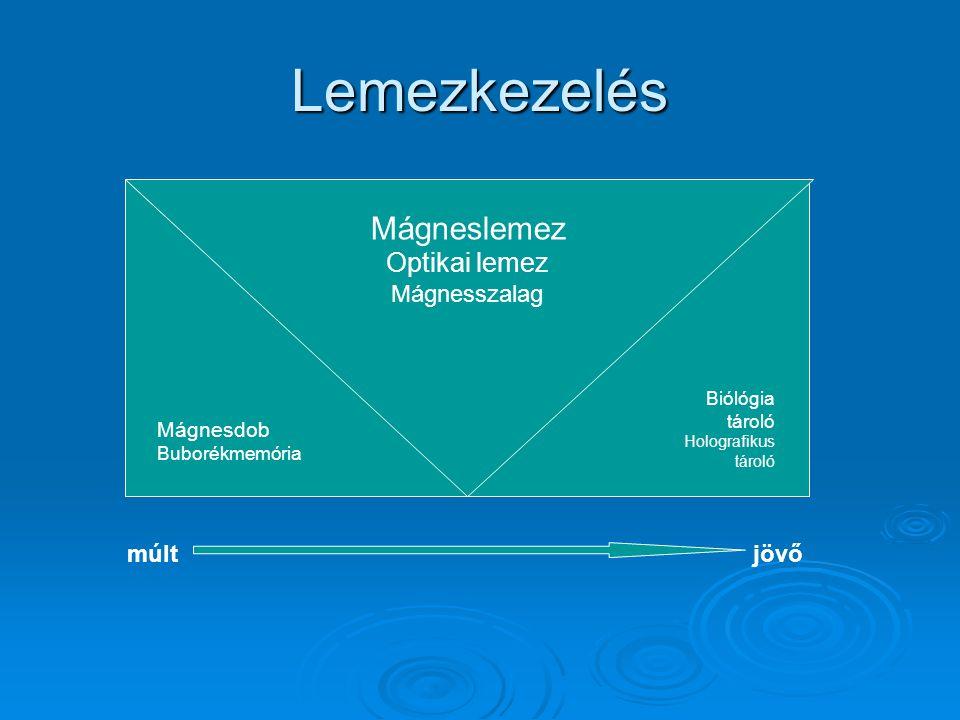  A mágneses elven működő háttértárolók esetében az adathordozót egy mágnesezhető réteggel vonják be, amit aztán a tárolandó adatnak megfelelően egy mágnes segítségével átmágneseznek.