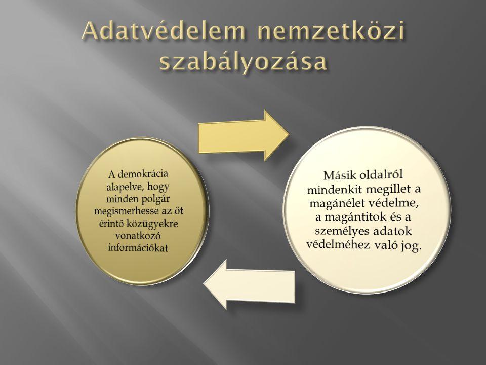 A nemzetközi ajánlások közös jellemzői: Egyensúly biztosítása a személyes adatok védelme és az információ szabad áramlása között A nemzetközi törvényhozásokban érvényesüljenek az ajánlások Azonos adatvédelmi normák érvényesüljenek mind az állami, mind a magánszektorban A 70-es évek elején az addigi megfogalmazott polgárjogi egyezmények nem bizonyultak elegendőnek a kérdés szabályozására az Internet megjelenésével.