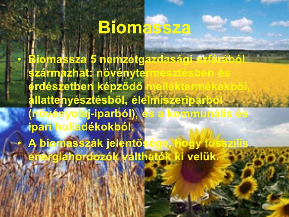 Biomassza Biomassza 5 nemzetgazdasági szférából származhat: növénytermesztésben és erdészetben képződő melléktermékekből, állattenyésztésből, élelmiszeriparból (növényolaj-iparból), és a kommunális és ipari hulladékokból.