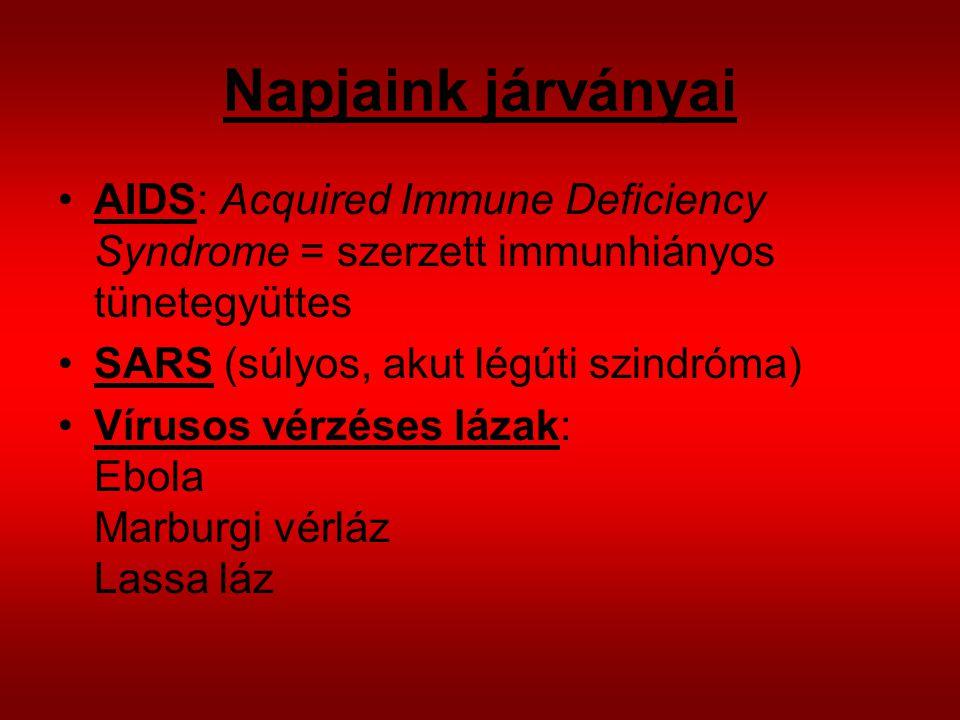 Napjaink járványai AIDS: Acquired Immune Deficiency Syndrome = szerzett immunhiányos tünetegyüttes SARS (súlyos, akut légúti szindróma) Vírusos vérzéses lázak: Ebola Marburgi vérláz Lassa láz