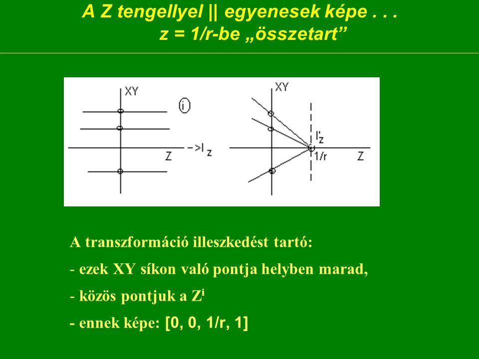 A Z tengellyel || egyenesek képe...